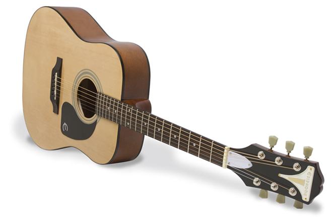 PRO-1 Acoustic Guitar