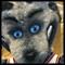 New Jersey Nets Mascot Sly Rocks With Epi
