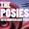 Posies Announce 30th Anniversary Tour