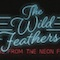 Wild Feathers Announce New LP