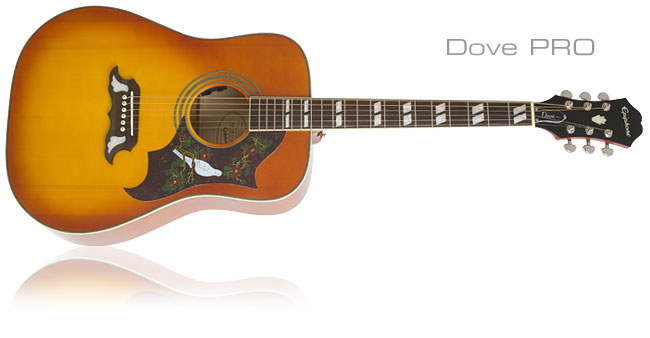 Going PRO with Epiphone Acoustic/Electric Guitars