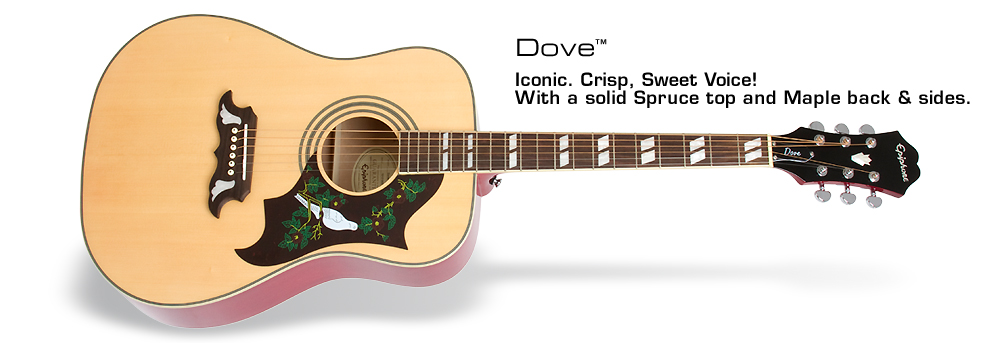 Dove: Iconic. Crisp, Sweet Voice! With a solid Spruce top and Maple back and sides