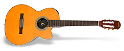 epiphone out of production products. Black Bedroom Furniture Sets. Home Design Ideas