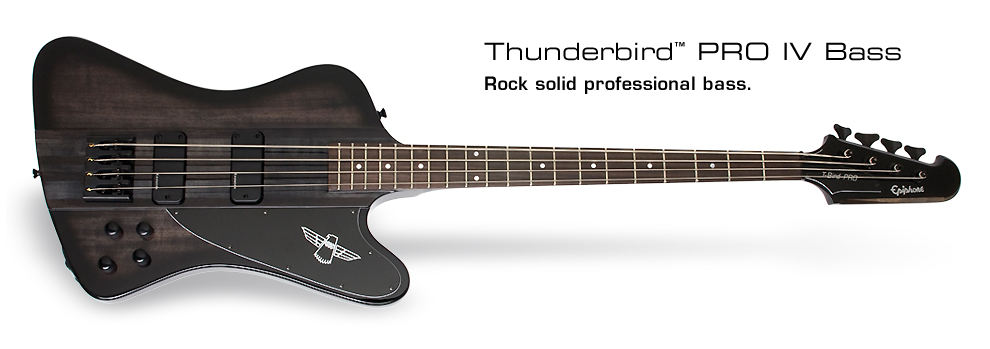 Thunderbird PRO-IV: Rock solid professional bass