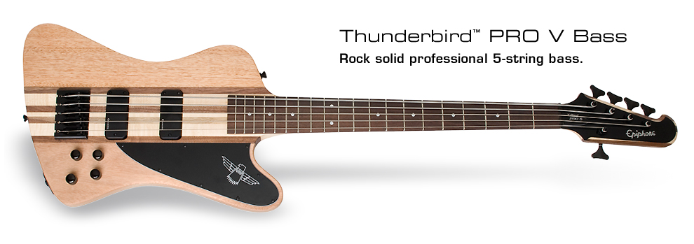 Thunderbird Pro-V: Rock solid profession 5-string bass