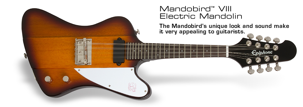 Mandobird-VIII: The Mandobird's unique look and sound make it very appealing to guitarists